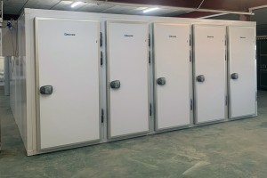 120 Body Mortuary Chamber Installation